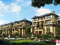 传麒湾联排别墅 1-4楼 410平米 前后院子 新空房 880万