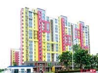 新经公寓8楼88平精装修十自10平102万证满五年,看中价格可以商量