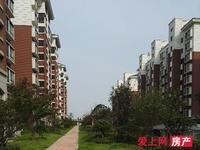房东置换诚心卖新庄花园3楼140.41平3 2 2卫 自开价115万单电梯