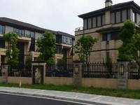 传麒湾边户1楼450平方别墅980万元