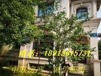 碧桂园城市花园 100万 3室1厅2卫 毛坯,地地道道好房!