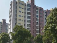 置地甲江南联排别墅389平方 实际面积500平超大楼台 大院子 大车库