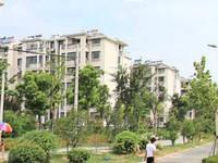 江帆花苑中区5楼119平 自 精装修 满五年唯一,开价140万