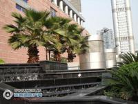 大成广场办公房5楼96平,采光好通风好,3.8万一年包物业费,有钥匙
