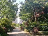 超值!帝景豪园10楼,142平 车位 储就,精装修满2年,280万!