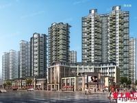 7月特价 大新望江水岸8楼117平80万新空