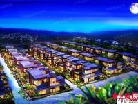 中联棠樾联排别墅 420平方 双车位 新空房 满二年 580万 有鈅匙