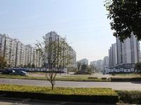 出租金港镇金成小区 塍丰社区 3室2厅1卫120平米面议住宅