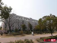 民丰苑东区 2楼 100平 精装 满2年 145万