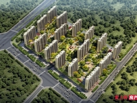 11月超低价卖 碧桂园凤凰台5楼117平毛坯180万
