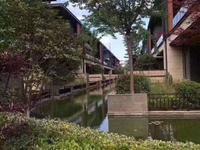 中联棠樾 中叠加别墅2-3楼261平米 车位 新空房 330万