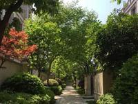 中昊檀宫1楼270平方米空房未装四室二厅520万元