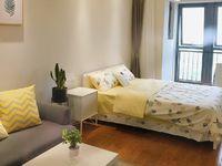 吾悦广场精装一室一厅公寓,适合自住出租
