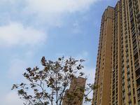 有钥匙!吾悦华府30楼,89平,新空房满2年,157万!