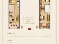攀华国际广场朝南复式公寓 三种户型任你选 买一层送一层 还送精装