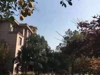 帝景豪园独栋别墅 753平方 超大院子 汽车库 新空房 满二年 2200万
